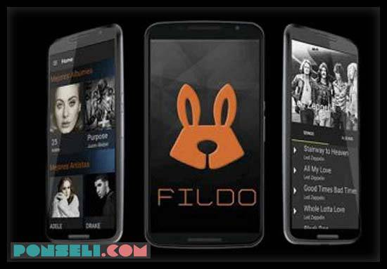 Aplikasi Fildo
