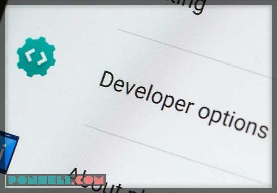 Menontaktifkan Opsi Developer