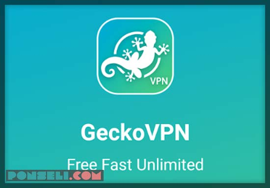 Download Gecko VPN